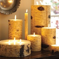 Birch Candles