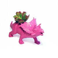 Up-cycled Hot Pink Triceratops Planter