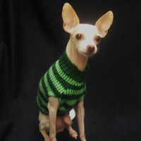 Green Dog Sweater Mint Stripes Soft Warm Small