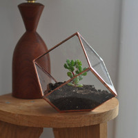 Earth Terrarium Kit, small cube glass planter in copper or silver color -- terrarium supplies -- eco friendly