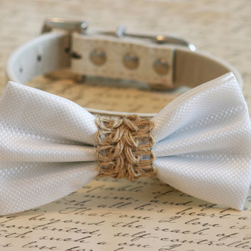 White dog bow tie, White wedding dog collar, Country wedding, Beach wedding,White Bow attached to leather collar, Rustic wedding