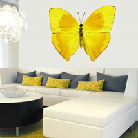 Yellow Butterfly - Wallflower