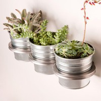 Poketo! Three-ring mountable planter - Steel