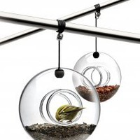 Eva Solo Bird Feeder: Bird Feeders