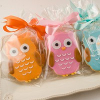 Owl Cookie Favors - 2 Dozen Decorated Sugar Cookies