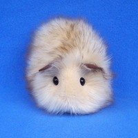 Honey Blonde Guinea Pig--Handmade Toy