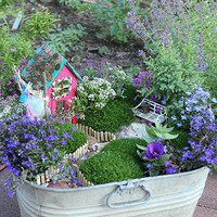 Fairy Garden in a bucket - too cute.