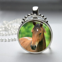 Photo Art Glass Bezel Pendant Horse Necklace