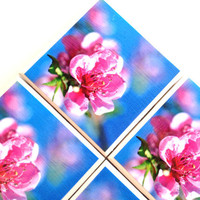 Pink Flower Coasters, Ceramic Tile, Photography Print by Lisa Argyropoulos, Blue Sky, Home Decor, Drink Table Set
