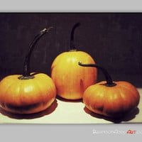 Thanksgiving Decor, Harvest Wall Decor, Pumpkin Photography, Food Art, Food Photography, Digital Photography