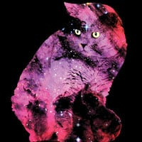 Celestial Cat - The British Shorthair & The Pelican Nebula Art Print | Print Shop