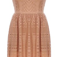 Netted Lace Dress | Women's Dresses | RicketyRack.com