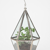 Faceted Hanging Terrarium- Silver One