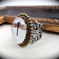 Dragonfly Cameo Ring- Small Glass Cabochon on Antiqued Bronze Setting & Thick Filigree Base in Antique Silver Ox