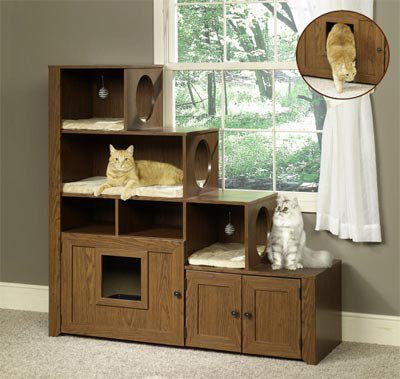 High Jump: Cat Bookcase Climber | Pets Trends