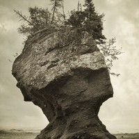 $35.00 Surreal Landscape Photograph  Rocks Trees Face by irenesuchocki