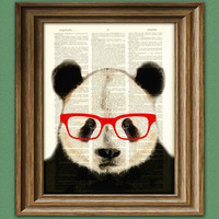 Panda Smarty Pants Panda Bear  with red glasses illustration beautifully upcycled dictionary page book art print