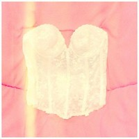 Lace Bustier by Sun Will Shine
