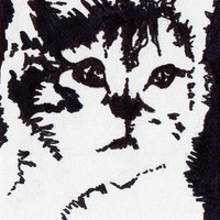 Kitten ACEO Original Sharpie Drawing by amostpeculiargirl on Etsy