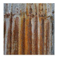 Rusty Tin Shower Curtain> Coastal, Vintage and Urban Chic Shower Curtains> Rebecca Korpita Coastal Design