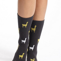 Llama Crew Socks