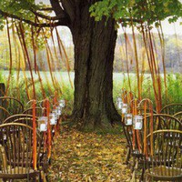 farm handmade-DIY / Ceremony Seating Tree Ribbons