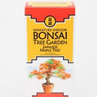 UrbanOutfitters.com > Miniature Indoor Bonsai Tree