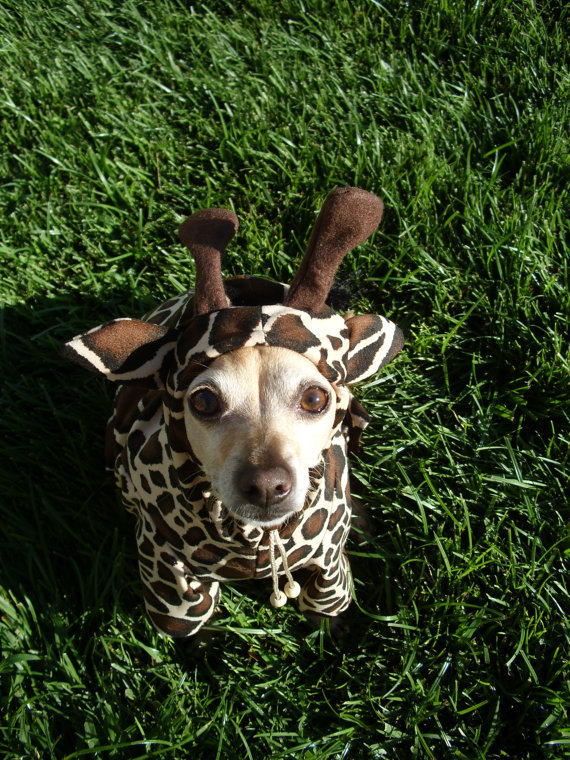 Giraffe Dog Pet Costume by GypsyEyesClothing