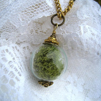 Round Glass Moss Terrarium Necklace Brass Gold