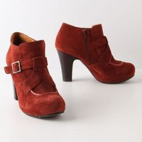 Rubicund Booties - Anthropologie.com