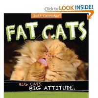 Amazon.com: 2013 Fat Cats wall calendar: Big cats. Big attitude. (9781402270949): Sourcebooks: Books