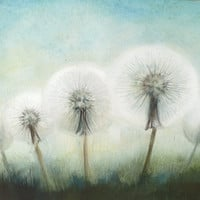 Dandelion Art,  Large Watercolor Painting of  Dandelions, Flower Original Painting, Aquarelle