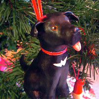 Custom Pet Caricature Ornament