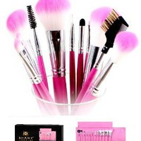 Amazon.com: SHANY Pro Vegan Mineral Brush Set with Pink Clutch: Beauty
