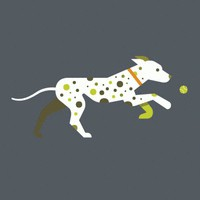 Betterbook: Dalmatian Fetch Dog