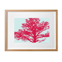 Heal&#x27;s | The Roost Tree Framed Print Burgundy by Paul Farrell &gt; Graphic &gt; Art &gt; Accessories