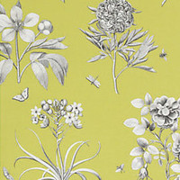 Heal's | Sanderson Etchings And Roses Wallpaper > Wallpaper