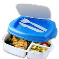 Stay-Fit Lunch 2 Go Container, EZ Freeze: Amazon.com: Kitchen &amp; Dining