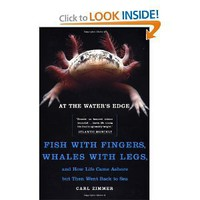 At the Water's Edge : Fish with Fingers, Whales with Legs, and How Life Came Ashore but Then Went Back to Sea [Paperback]