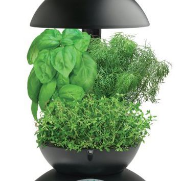 AeroGarden 3 with Gourmet Herb Seed Kit, Black