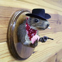 cowboy gray squirrel head mount taxidermy Poker Player CHRISTMAS GIFT log cabin