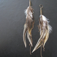 Chasing Tail  Feather Earrings  Brown Tonal by savagesalvage