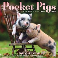 Pocket Pigs 2013 Wall Calendar: The Teacup Pigs of Pennywell Farm: Richard Austin: 9780761167273: Amazon.com: Books