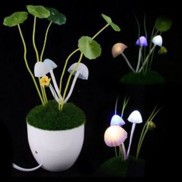 Romantic Avatar Mushroom LED Night Lamp [#00300070] - US$7.94 : Amazplus.com