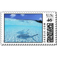 Maldives Blue Sky. Turquoise Sea-Fishes In The Sea Postage