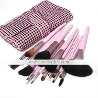 Brand New 21Pcs Professional Makeup Brush Kit Set [#00285831] - US$28.88 : Amazplus.com