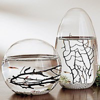 EcoSphere Pod with Self-Sustaining Sea Ecosystem - Wind and Weather