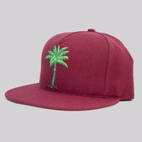 Halloway palm 5Panel Snapback Cardinal : Karmaloop.com - Global Concrete Culture