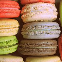 12 Assorted French Macarons - Christmas, Holidays, Sweet Sarah