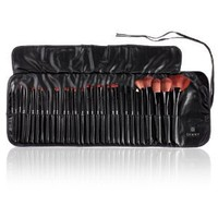 Shany Super Professional Brush Set with Leather Pouch, 32 Count: Beauty
